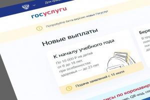 В Коми заявления о единовременной выплате поданы на 102 тысячи детей школьного возраста