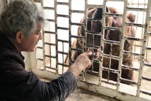 Из-за карантина животные зооуголка Ухты остались без средств к пропитанию. Посетители не приходят, а, следовательно, нет денег на еду