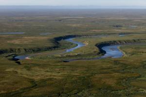 Прокуратура НАО организовала проверку по факту разлива нефти в Ненецком округе