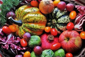 Сезонные фрукты и овощи: польза и здоровье