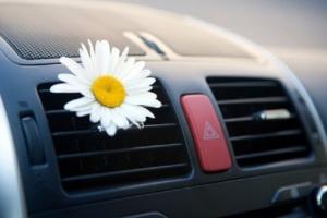 10 важных советов по уходу за автомобилем летом